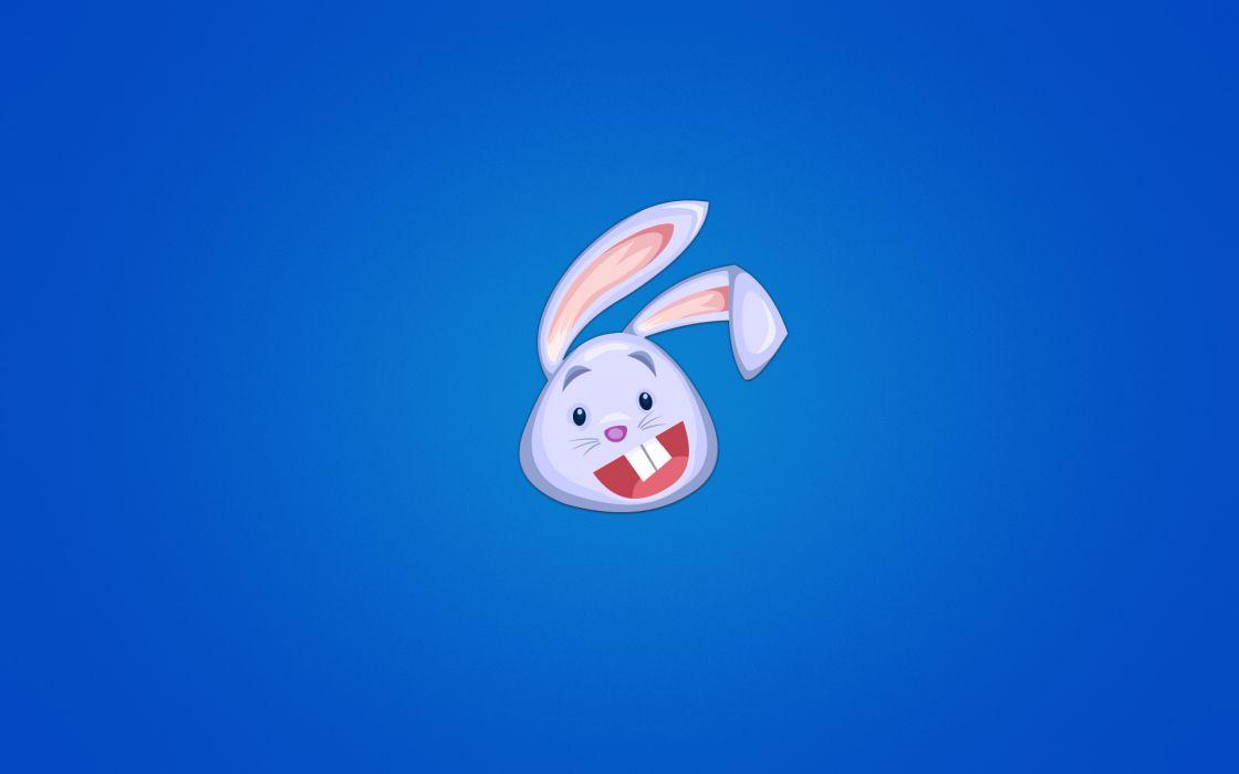 rabbit rabbits funny humor wallpaper