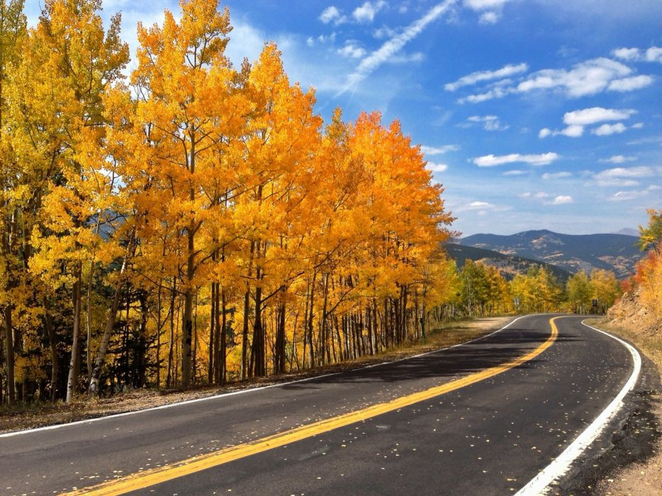 Autumn Road Trees Nature G Wallpaper
