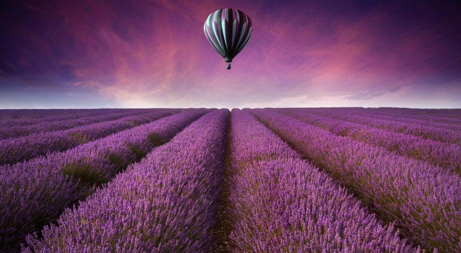 nature landscape field fields air balloon flowers purple sky wallpaper