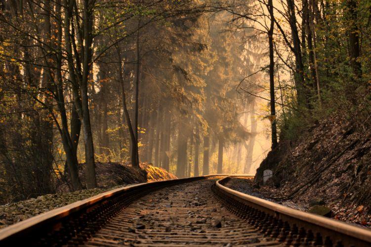 Railroad Forest train tracks trees wallpaper