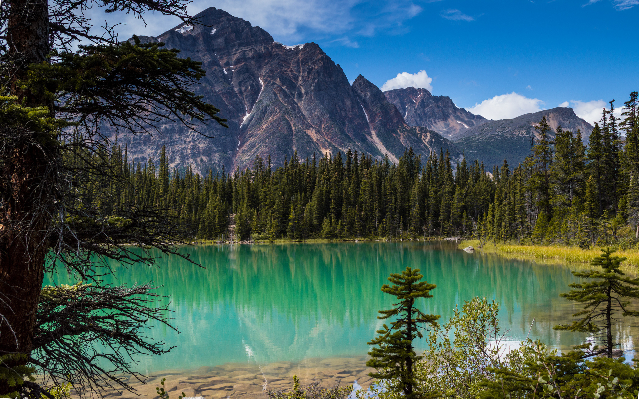 Forest Trees Mountains Lake Wallpaper 2048x1278 132681