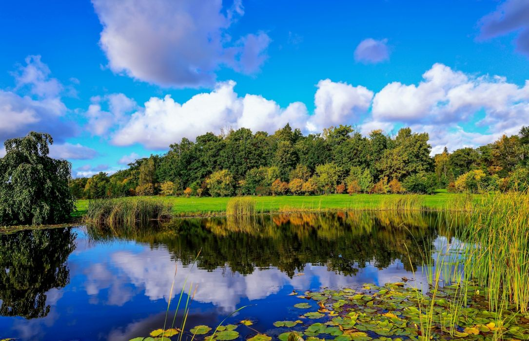 Finland  pond  wood  reeds  clouds  reflection autumn fall wallpaper