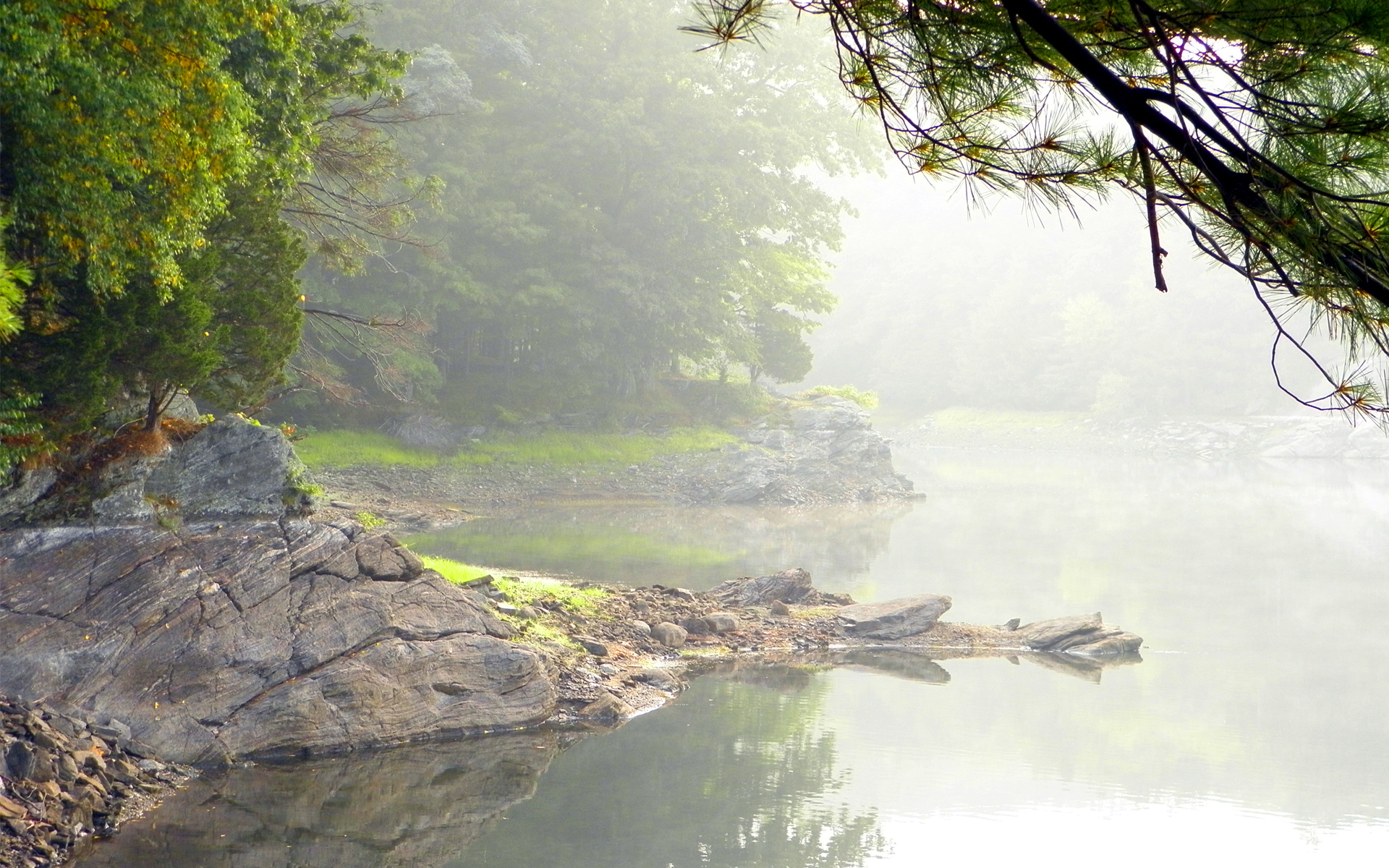 Wood rocks lake mist fog mood trees shore reflection wallpaper
