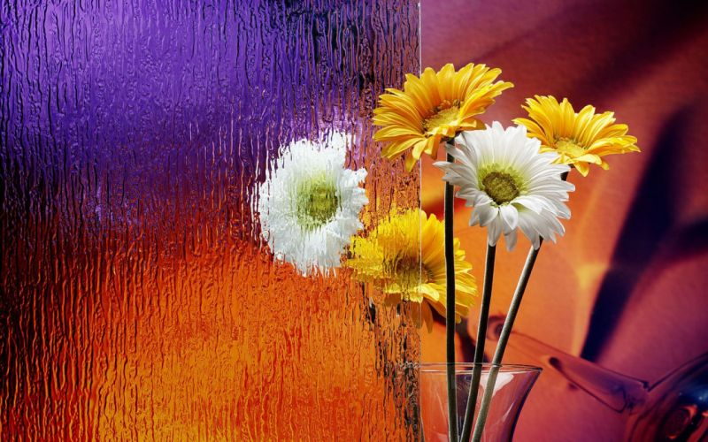 Flowers Flowerpot Frosted Glass wallpaper