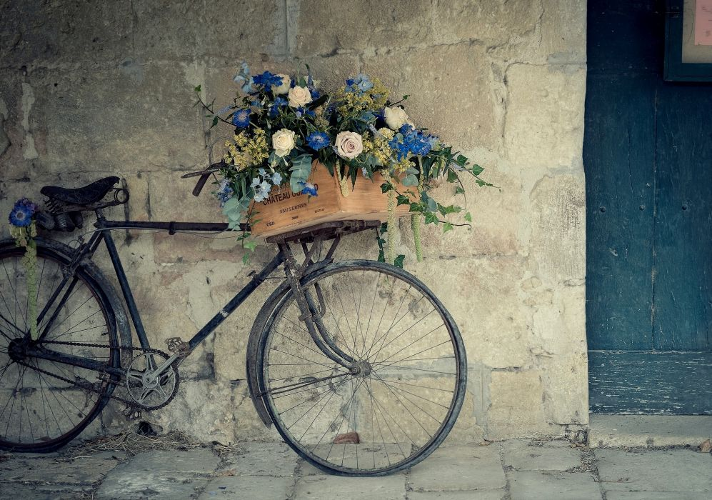 roses flowers baskets boxes bicycle mood wallpaper