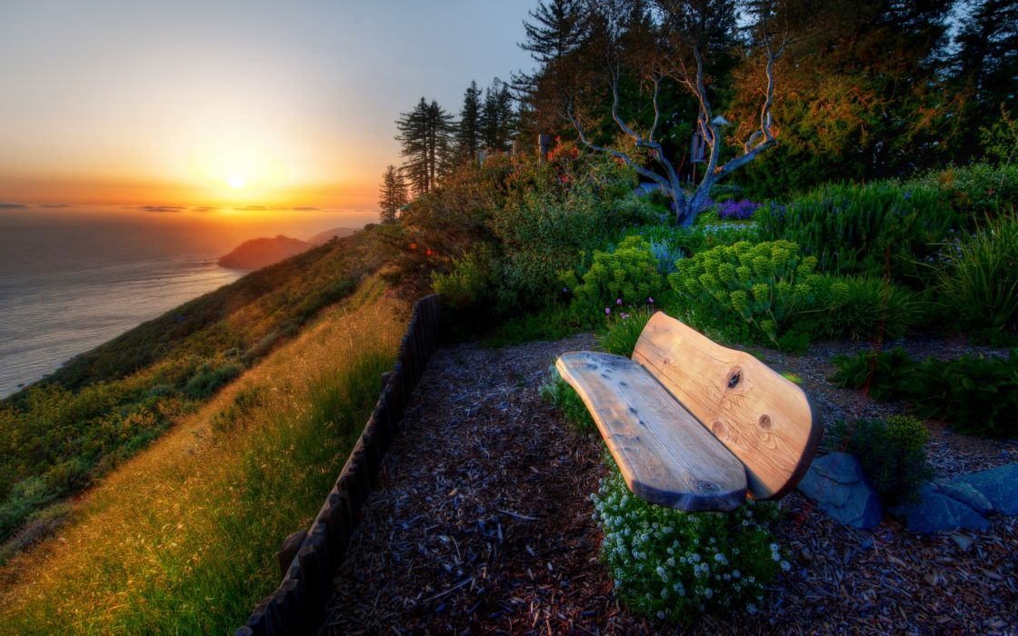 nature scenery bench plants flowers flowers herbs wood trees sea water river sunset sun sky flora wallpaper