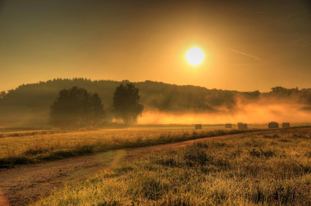 Field Germany Fog Sun Nature sunrise wallpaper