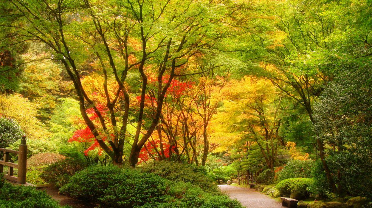 USA Garden Portland Japanese Trees Nature autumn fall wallpaper