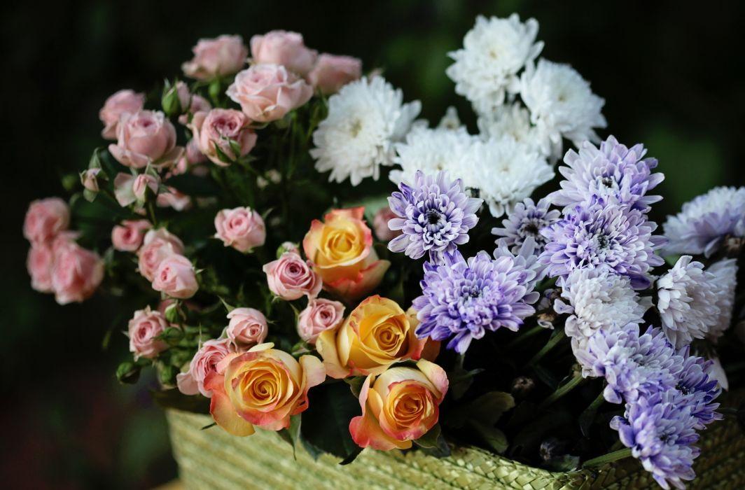 roses chrysanthemums flower buds bouquet wallpaper