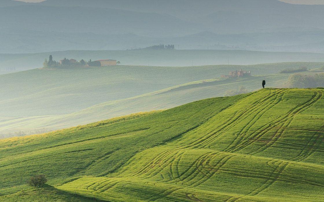nature landscape field fog wallpaper