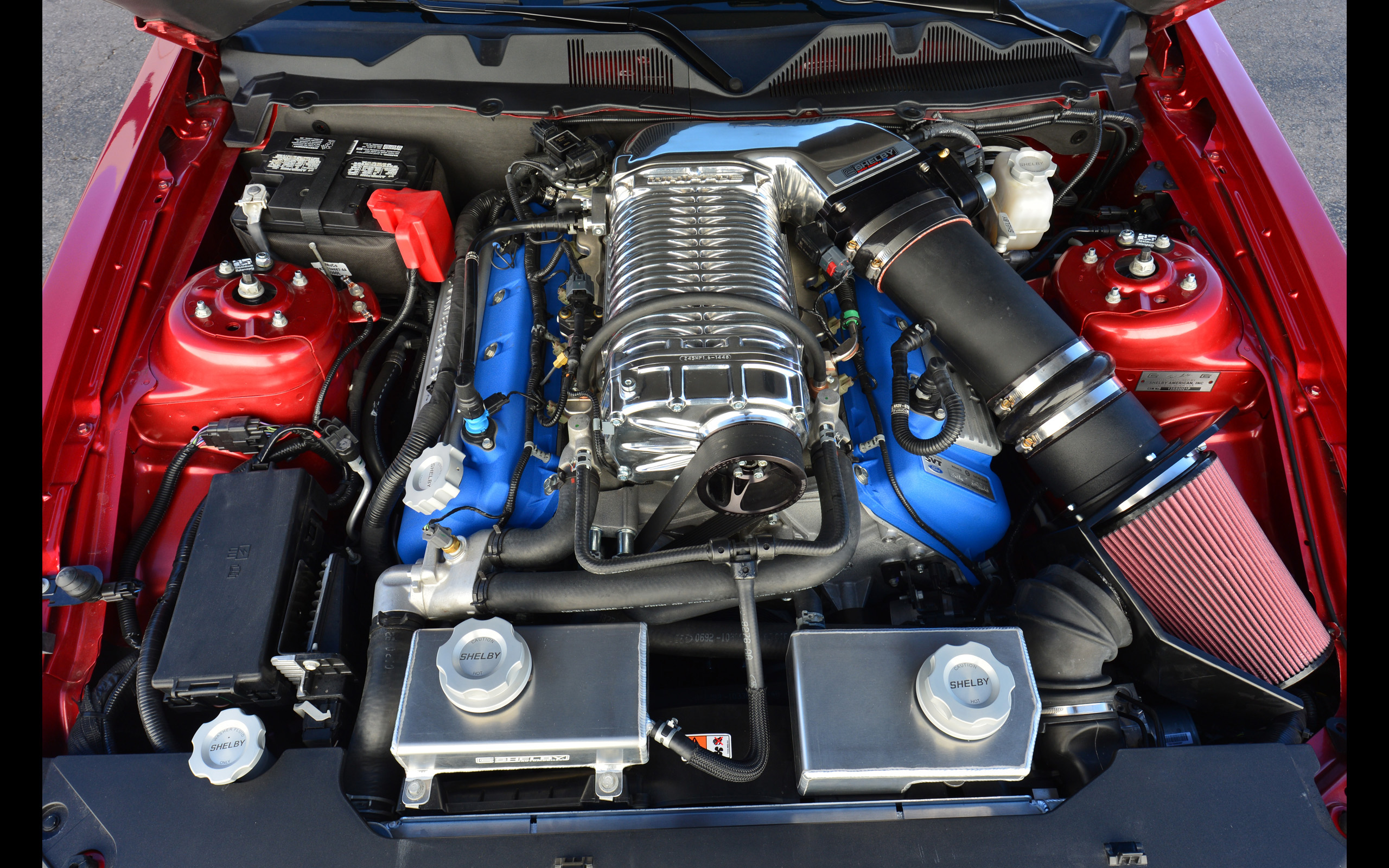 2013 shelby gt500 super snake muscle supercar ford mustang engine wallpaper 2560x1600 140510 wallpaperup