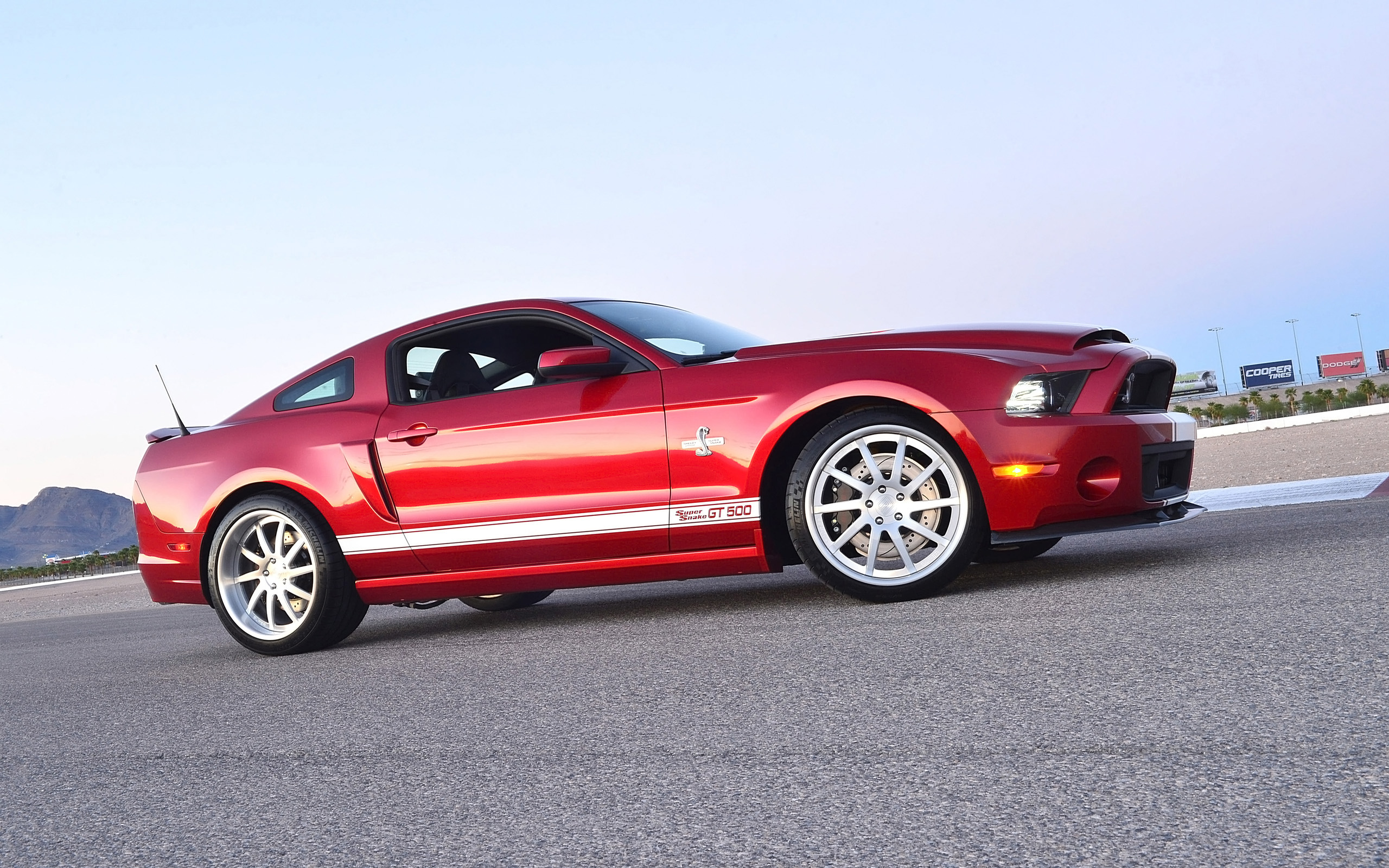 2013 shelby gt500 super snake muscle supercar ford mustang jq wallpaper 2560x1600 140513. Black Bedroom Furniture Sets. Home Design Ideas