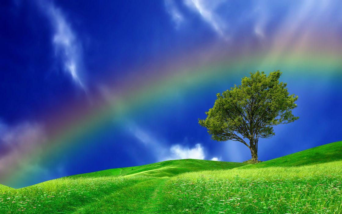 hills tree rainbow landscape wallpaper