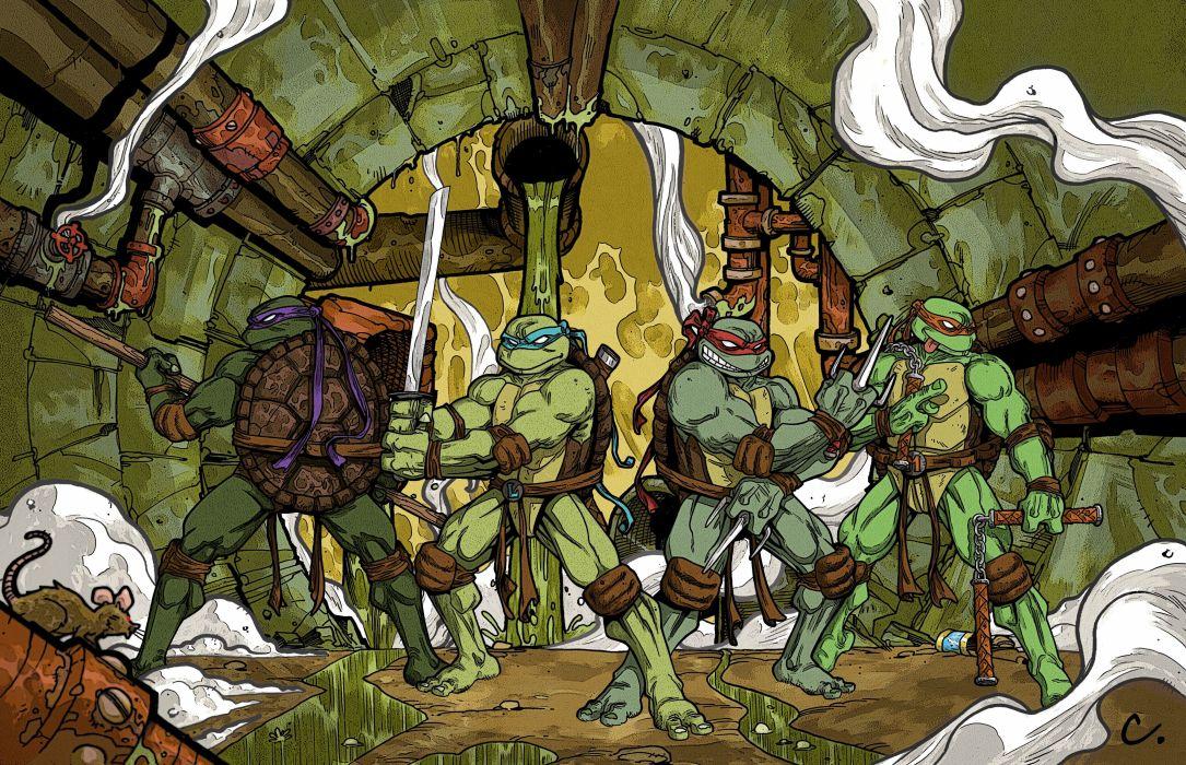 Teenage Mutant Ninja Turtles Warrior Cartoon      j wallpaper