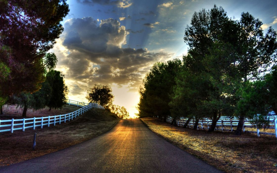 nature landscape road tree trees leaves leaves grass green fence gate fencing track sun sky clouds wallpaper