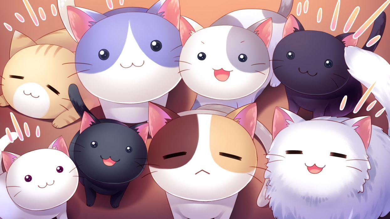 nyan cafe macchiato animal cat cat smile game cg nyan cafe macchiato skyfish yukie wallpaper