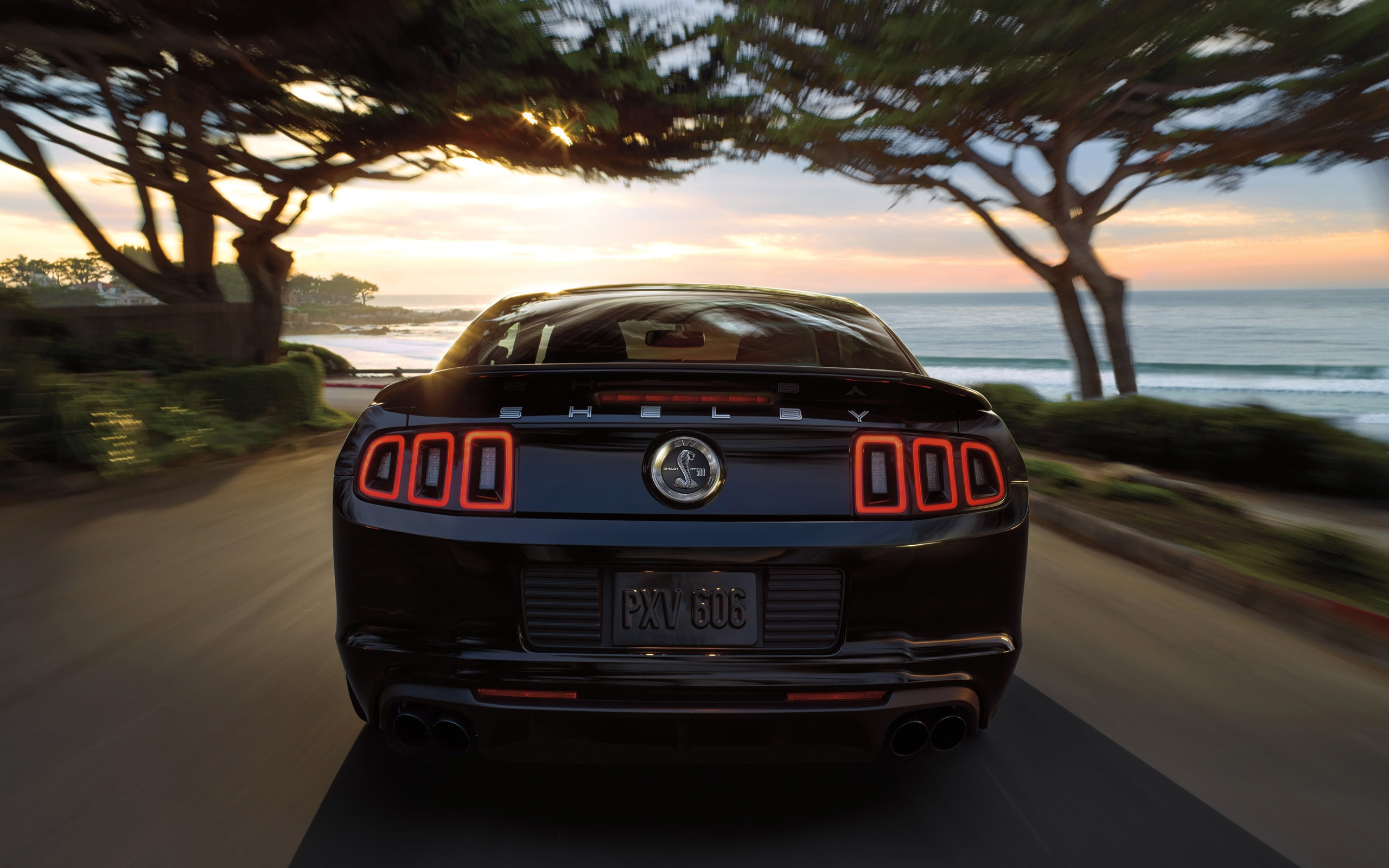 2014 ford mustang muscle g wallpaper 2560x1600 149371 wallpaperup - Mustang 2014 Black Wallpaper