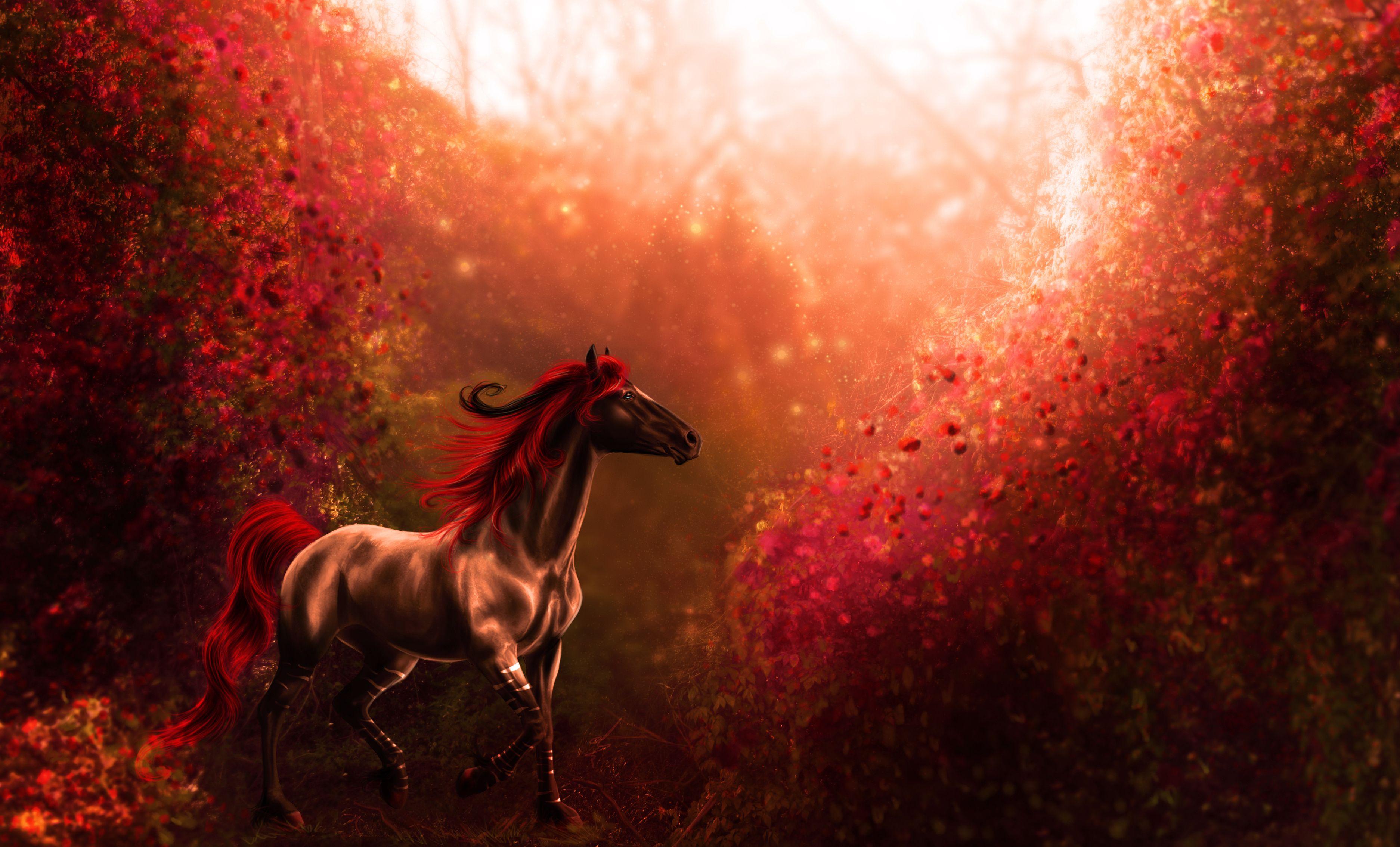 Horse wallpaper | 3748x2268 | 151739 | WallpaperUP