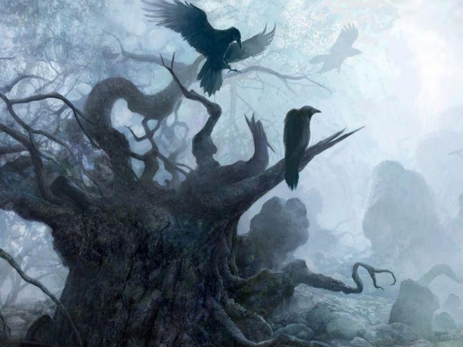 THE WITCHER fantasy dark raven death gothic halloween f wallpaper