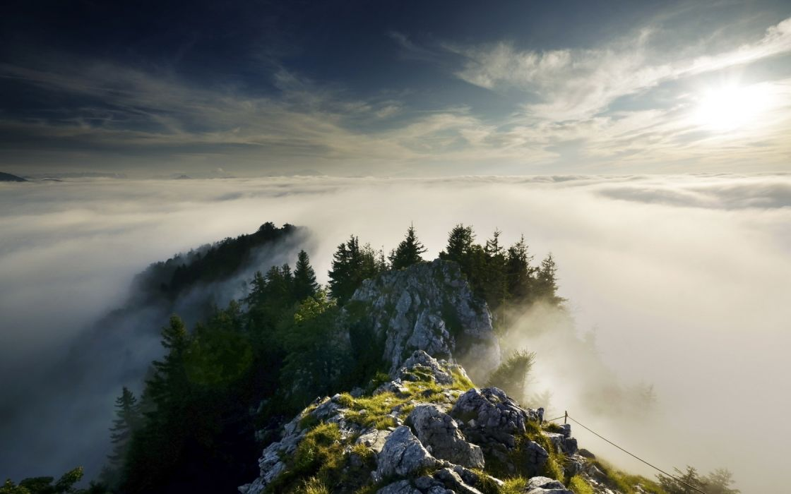Mountains Fog Trees wallpaper