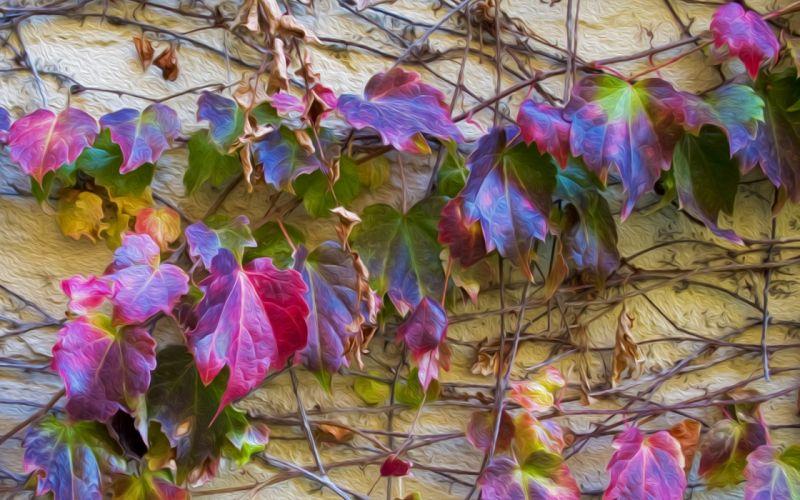 plants wall painting wallpaper