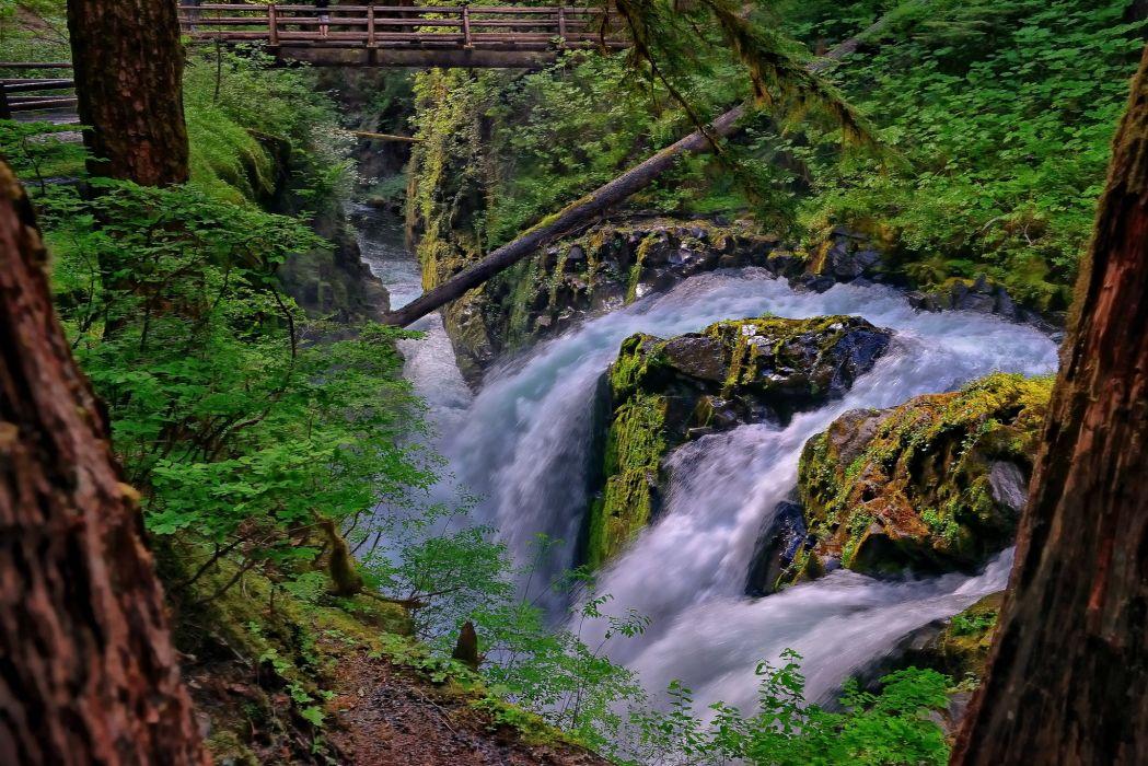 Washington waterfall river forest bridge stream wallpaper