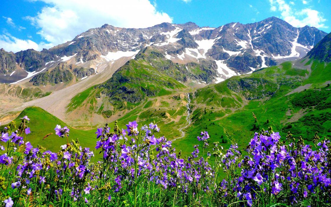 mountains alps flowers landscape wallpaper