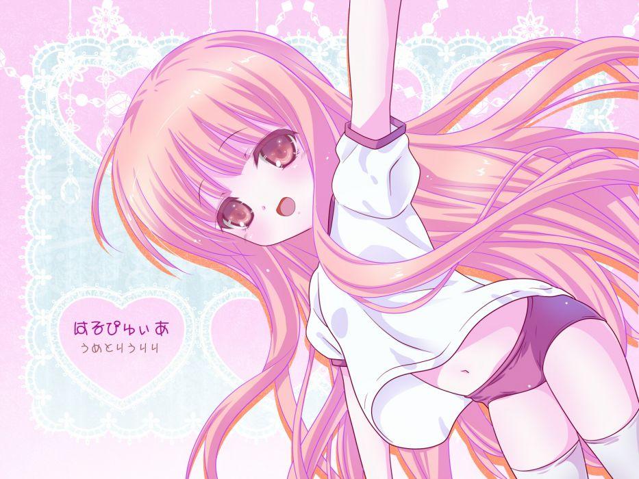 ro-kyu-bu! bloomers gym uniform hakamada hinata long hair navel pink eyes pink hair ro-kyu-bu! thighhighs wallpaper