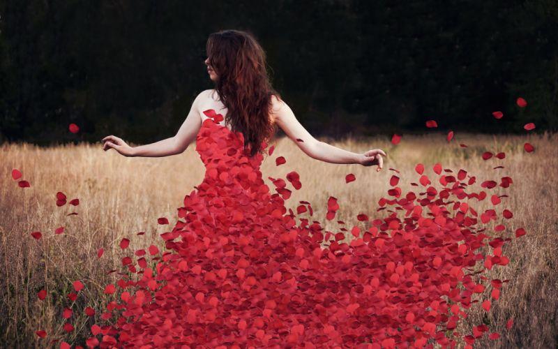 petals flowers rose brunette mood bokeh wallpaper