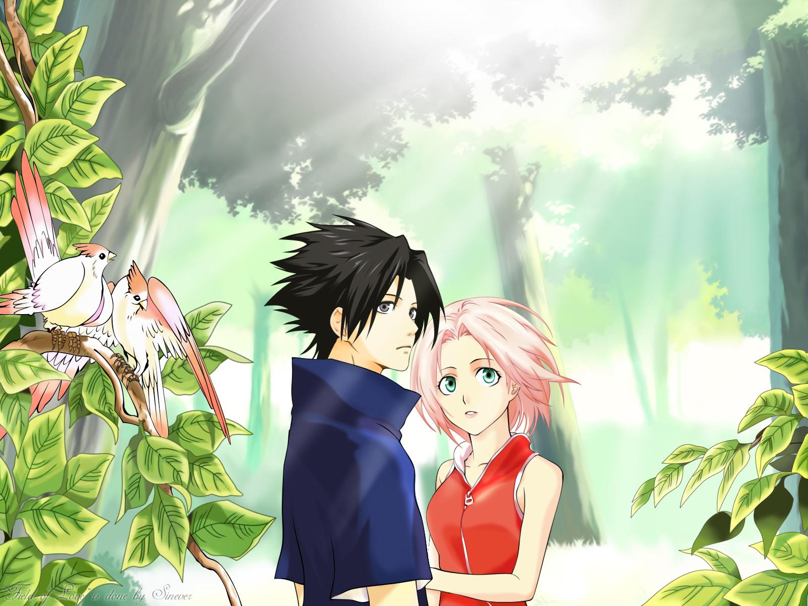 sasuke protects sakura wallpaper - photo #15