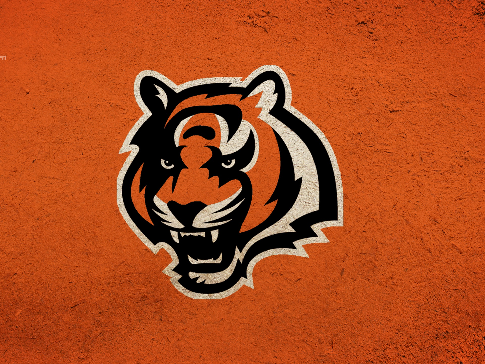cincinnati bengals nfl football gj wallpaper 1920x1440