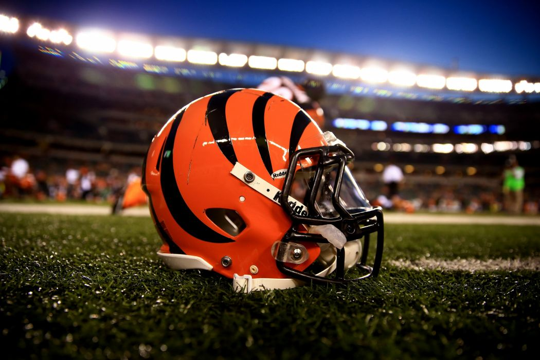 CINCINNATI BENGALS nfl football   rq wallpaper