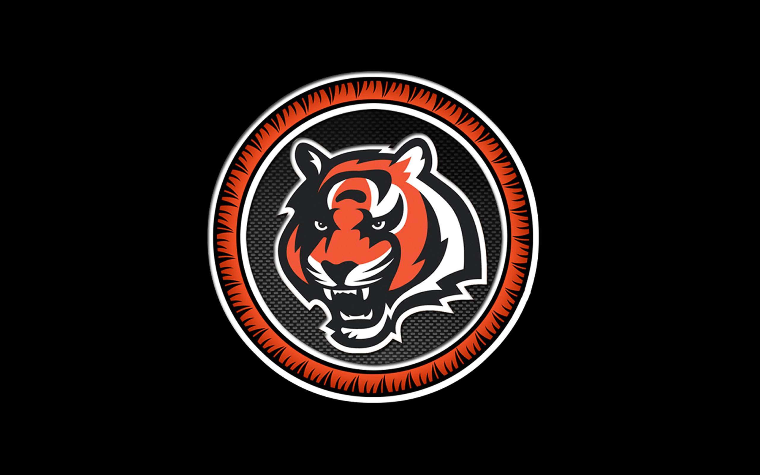 cincinnati bengals nfl football c wallpaper 2560x1600