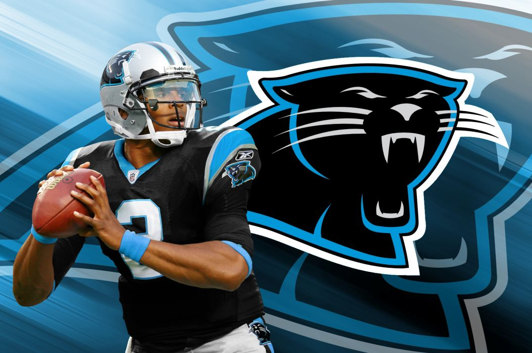 Carolina panthers nfl football t wallpaper 1728x1148 157832 carolina panthers nfl football t wallpaper voltagebd Image collections