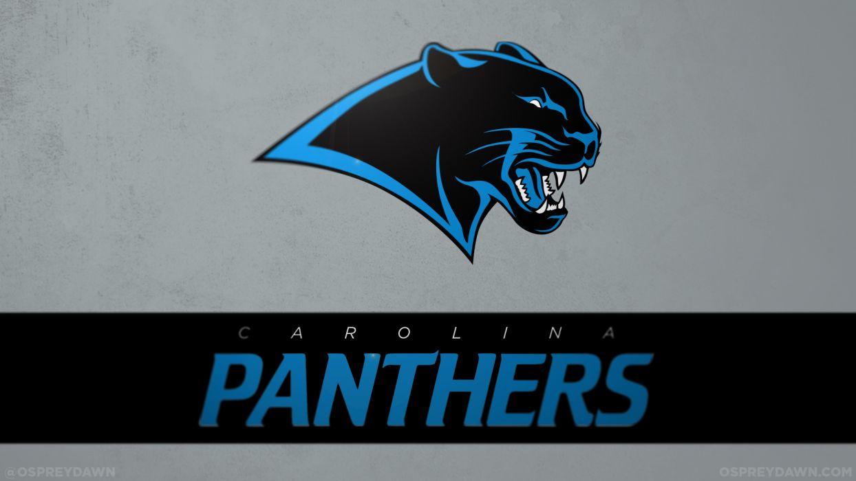 Carolina panthers nfl football rk wallpaper 1920x1080 157859 carolina panthers nfl football rk wallpaper voltagebd Image collections