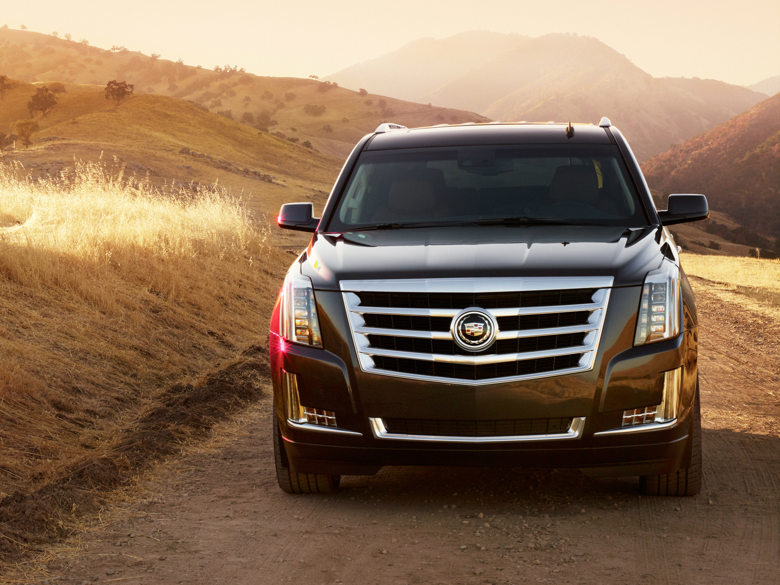 2015 cadillac escalade suv luxury d wallpaper 1600x1200 159378 wallpaperup. Black Bedroom Furniture Sets. Home Design Ideas