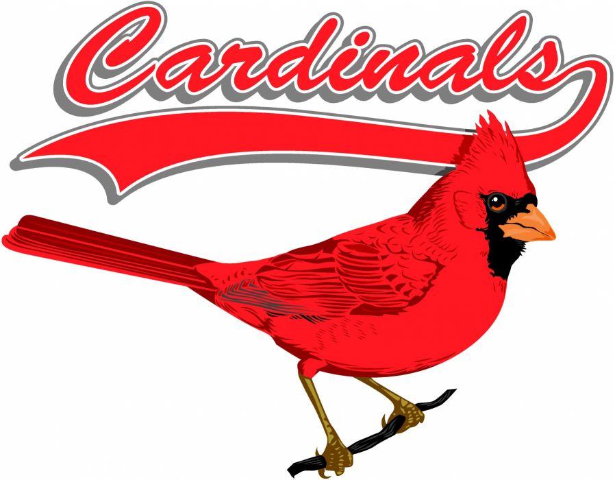 ST_ LOUIS CARDINALS baseball mlb   j_JPG wallpaper