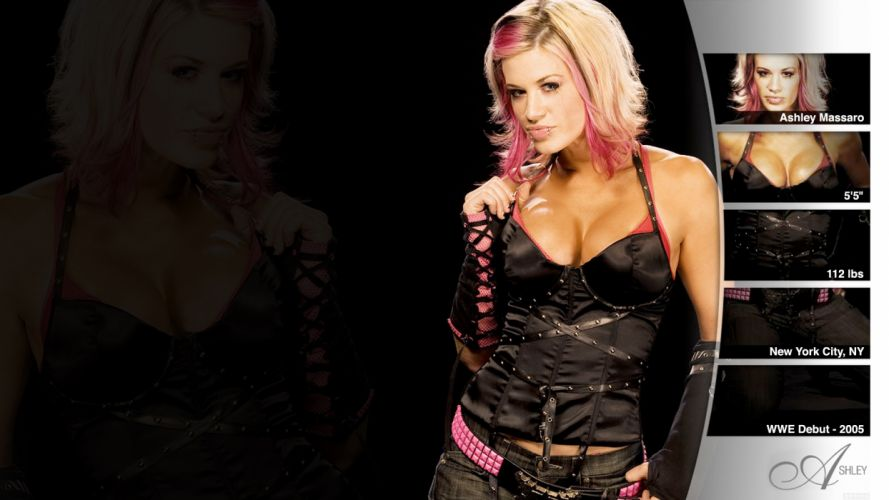 WWE DIVAS wrestling sexy babe e wallpaper