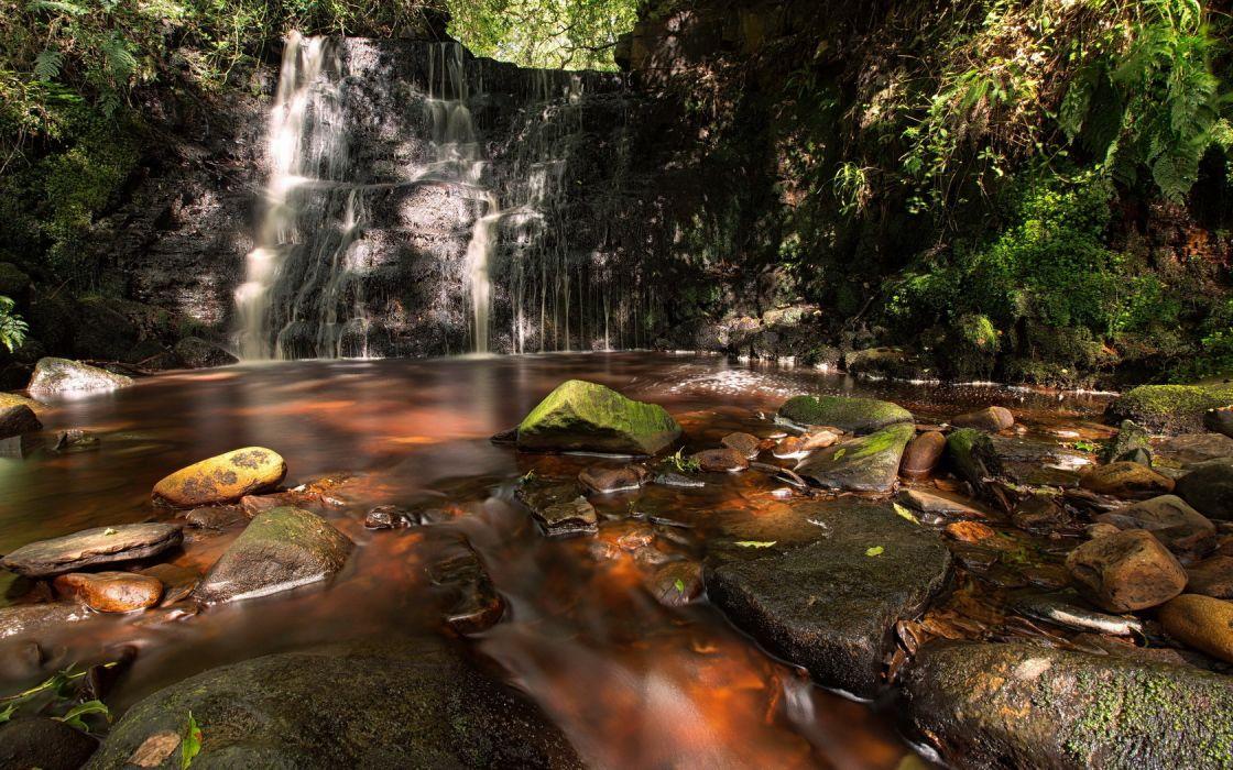 Landscape Forrest Waterfall wallpaper