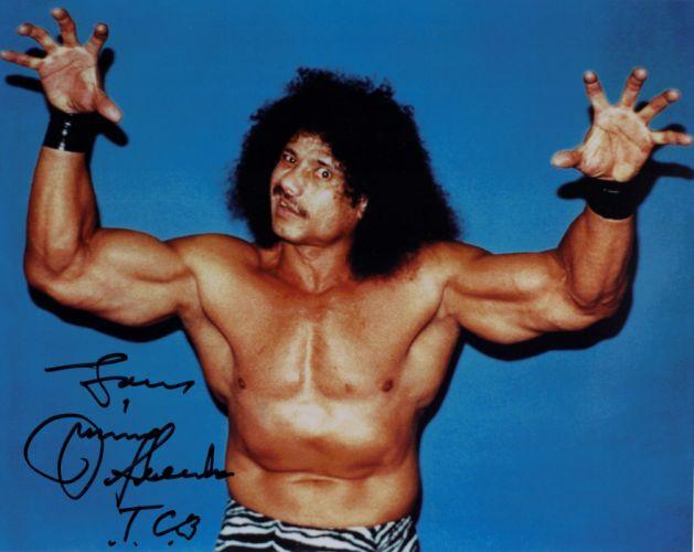 WWE wrestling he wallpaper