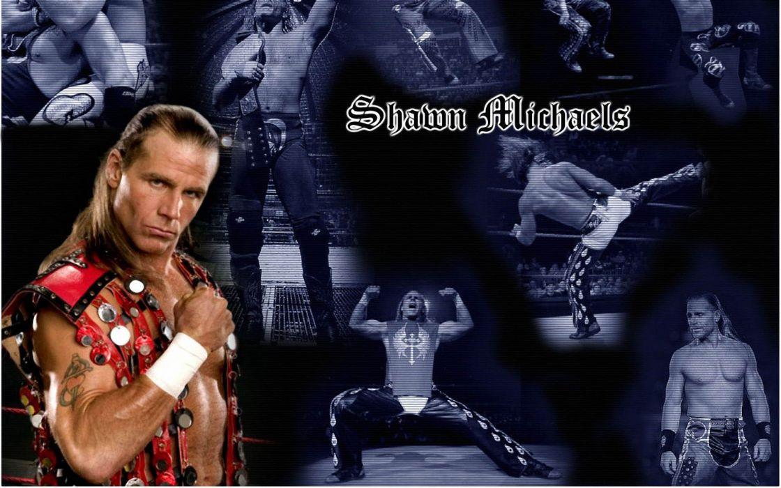 WWE wrestling    go wallpaper