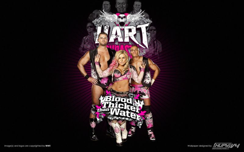 WWE wrestling fx wallpaper