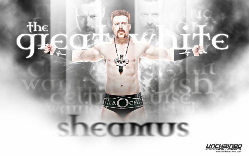 WWE wrestling rw wallpaper