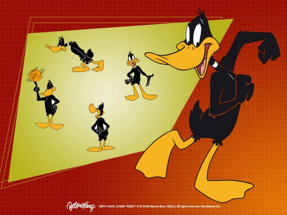 DAFFY looney toons   hd wallpaper