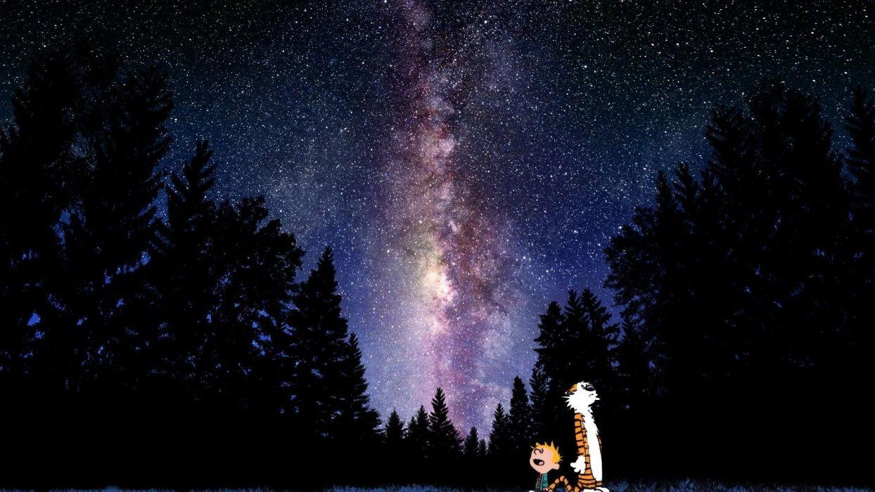 calvin and hobbes comics sky stars mood sci-fi      g wallpaper