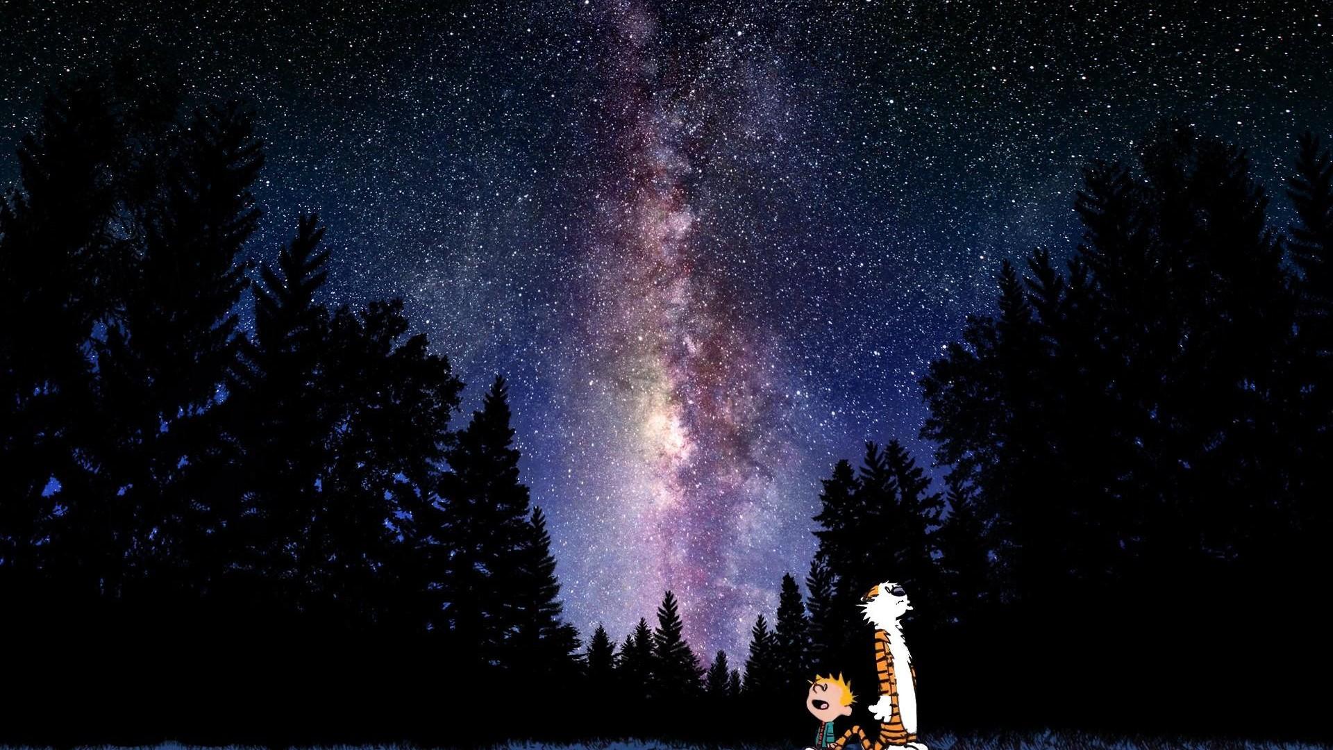 Calvin And Hobbes Comics Sky Stars Mood Sci Fi G Wallpaper