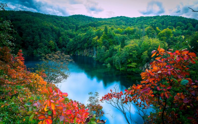 autumn forest lake trees waterfalls landscape wallpaper