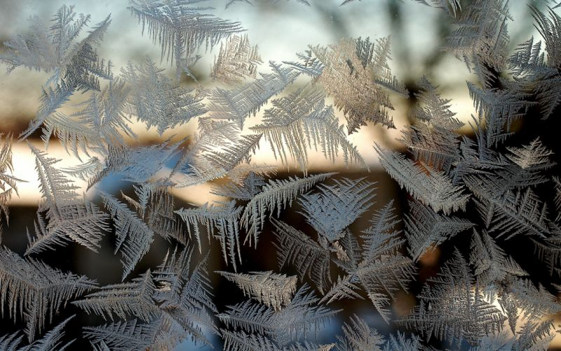 frost on the glass patterns window bokeh winter wallpaper