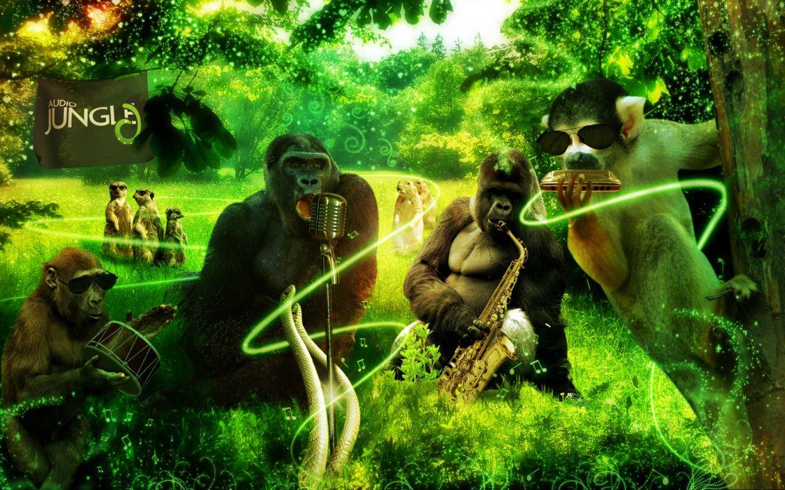 Jungle Animals Music 3d Art Gorilla Monkey Meerkat Wallpaper Images, Photos, Reviews