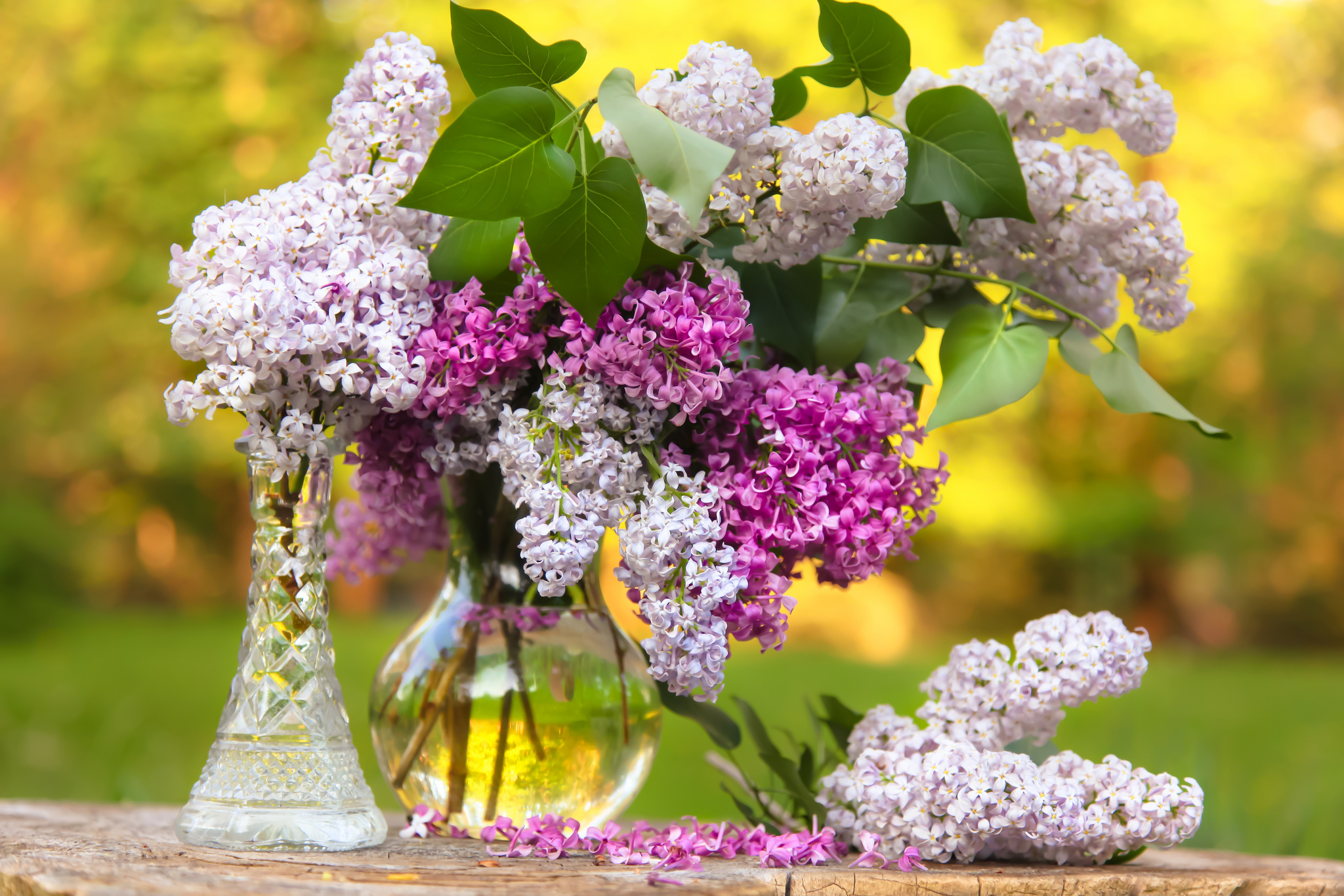 lilac bouquet vase bokeh wallpaper 2048x1365 162849. Black Bedroom Furniture Sets. Home Design Ideas